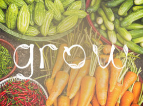 grow community garden project