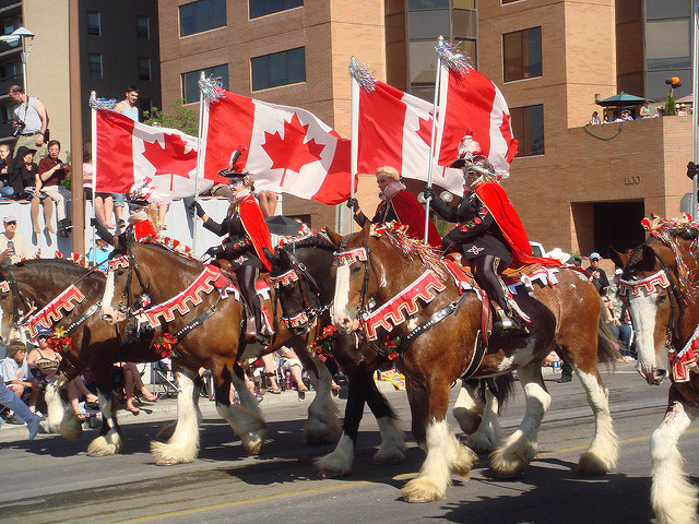Calgary Stampede The Immigrant Education Society Ties
