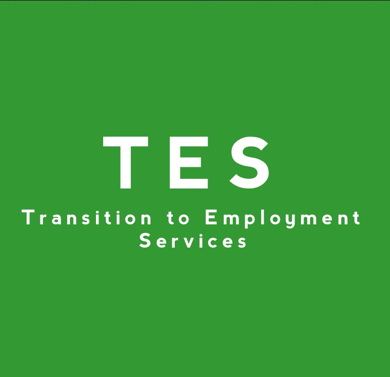 Transition to Employment Services Image